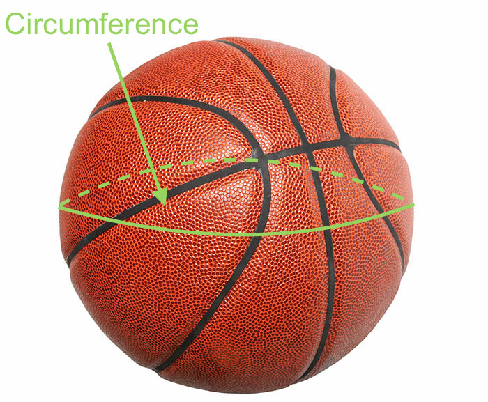 Basketball size, measurements