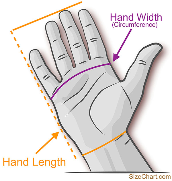 Hand width and hand length measurements